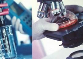 MICROBIOLOGY – 3rd YEAR MEDICINE COMENIUS UNIVERSITY